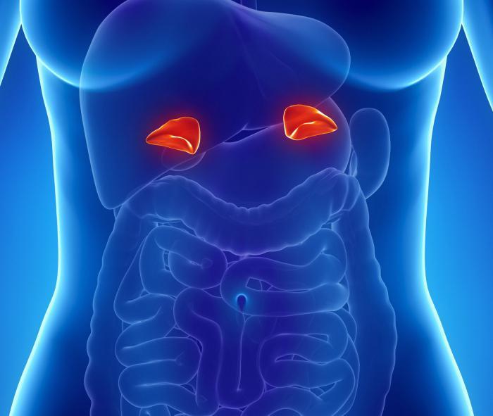 hipertenzija s nadbubrežne kriza simpato-