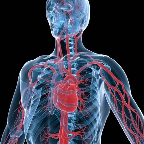 karotidna stenoza i hipertenzije kurkuma liječenje hipertenzije