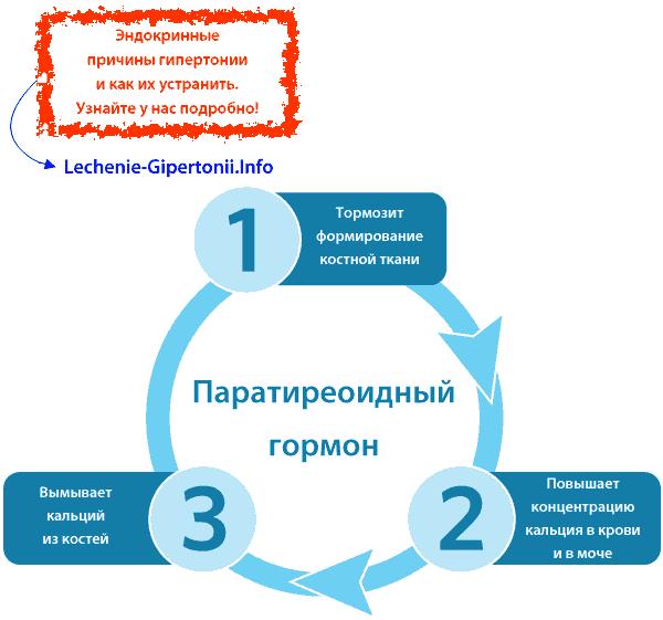 urolitijaze hipertenzija razlog)