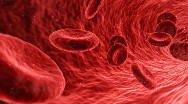Nedostatak hemoglobina u krvi – uzroci i liječenje?