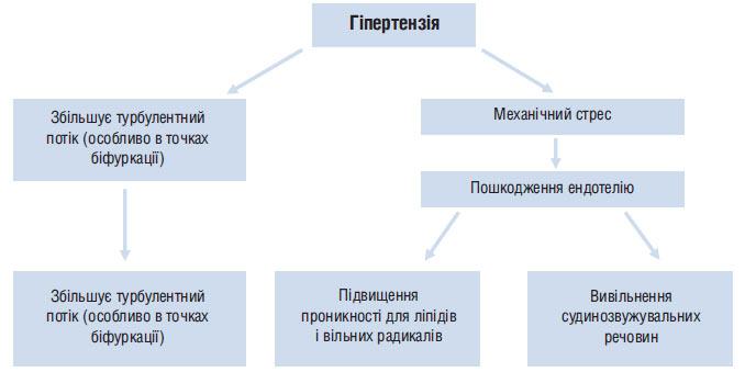 hipertenzija ishim)