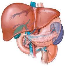 gušterače bolesti i hipertenzije)