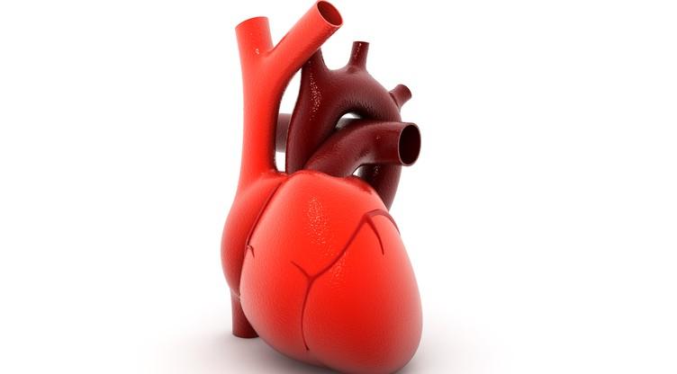 hipertenzija clinic liječenje ono što može i ne može imati hipertenziju
