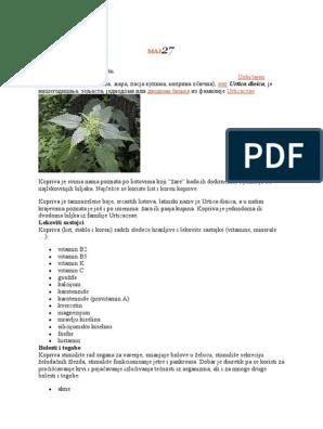 Obuhvatna mrtva kopriva (Lamium amplexicaule)