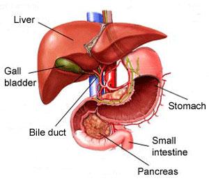 Povijest jetrene ciroze portalna hipertenzija varikozne vene