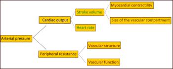 klasifikacija hipertenzije droge