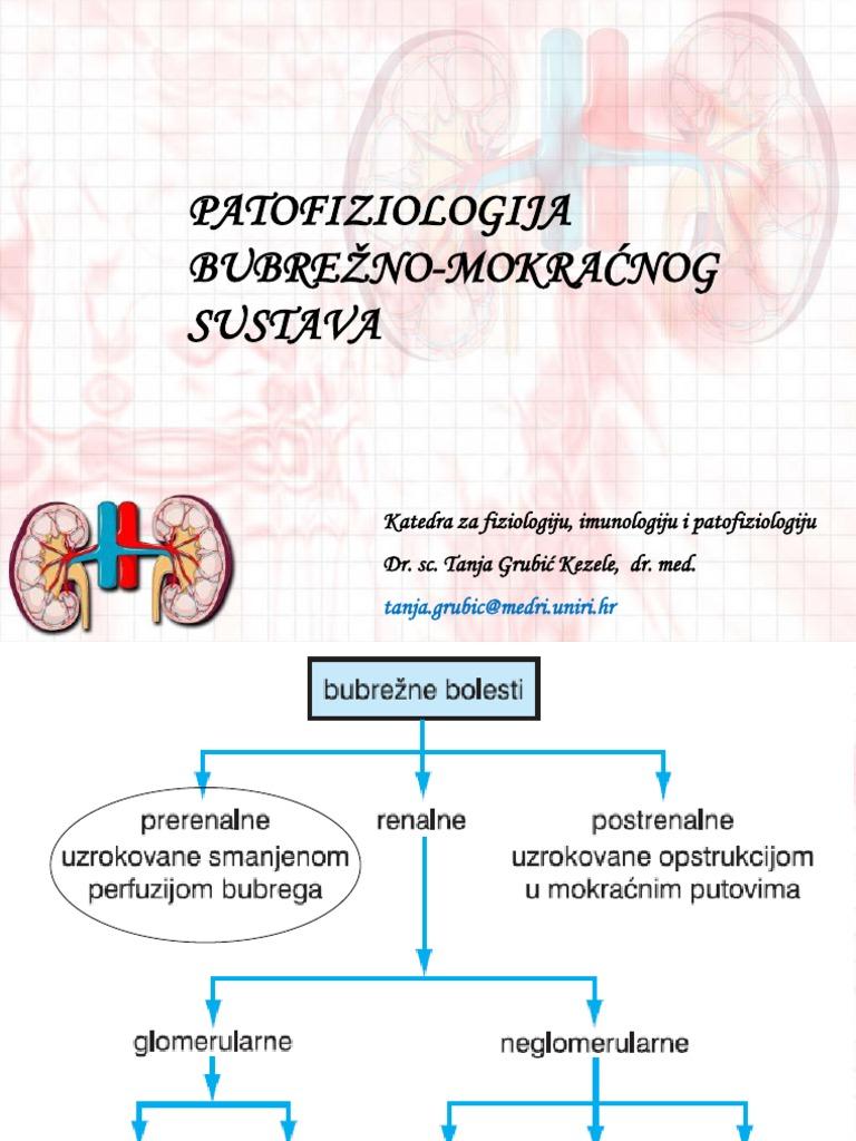 Hipertenzija u urinu