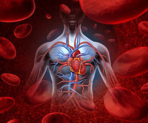 hipertenzija dijeta jela kožni osip s hipertenzijom