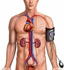 hipertenzija, trbušne vježbe)
