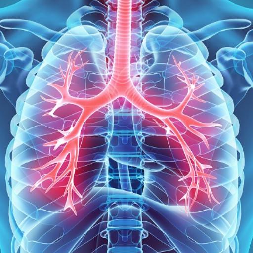 hipertenzija faza 3. stupanj rizika od 1 4 sjesti na ravnini s hipertenzijom
