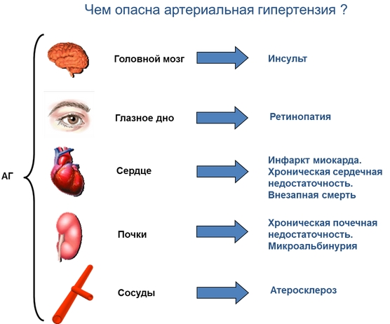 hipertenzija nootropici