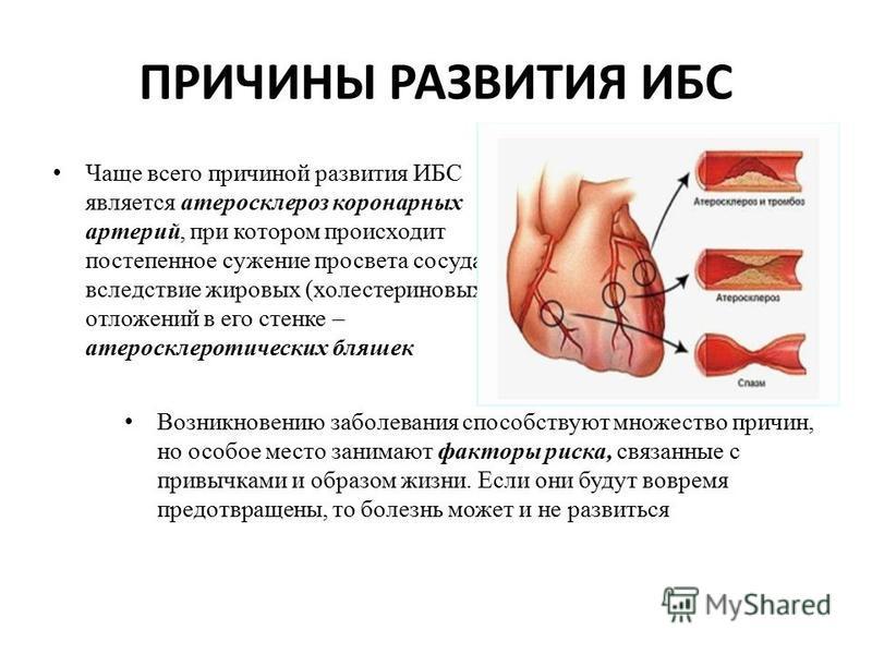 posebno u masaži za hipertenziju)