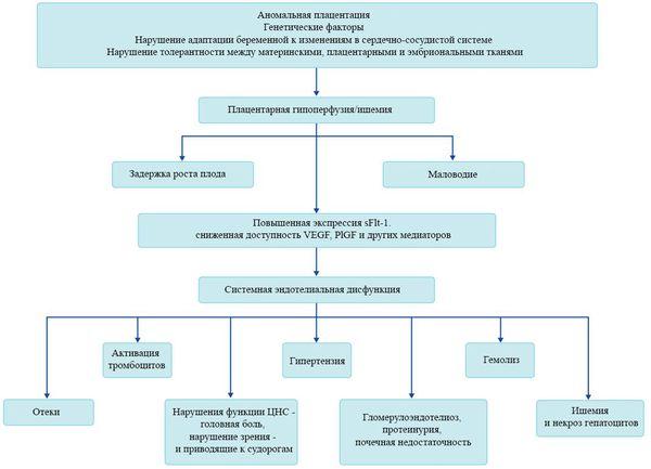 Visoki krvni tlak: uzroci i liječenje - Migrena -