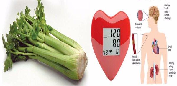 Liječenje povišenog krvnog tlaka - PLIVAzdravlje