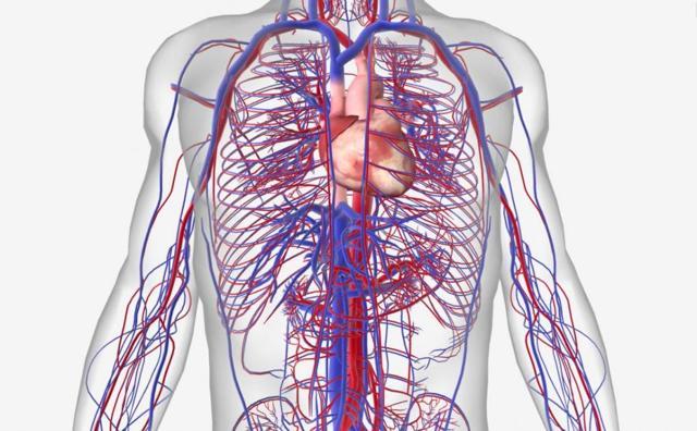 idrinol hipertenzija)