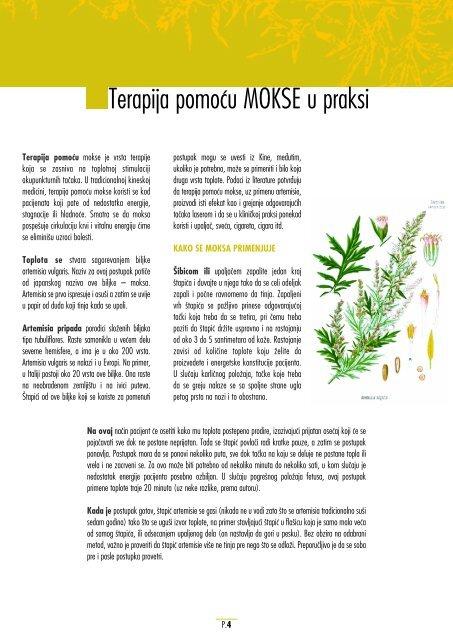 Sjemenke lana za smanjenje povišenog krvnog tlaka