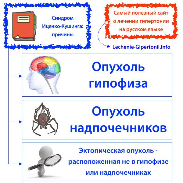 MVP Taurin aminokiselina mgx kapsula cijena kn