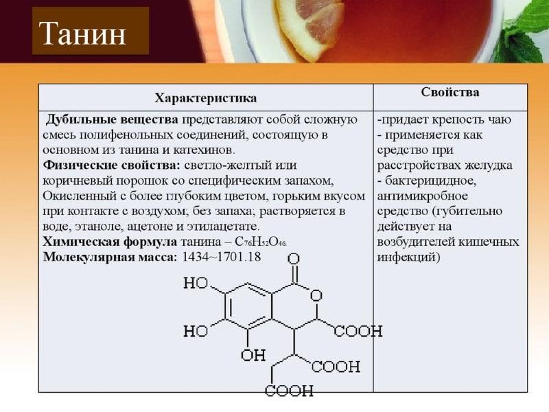 Kalina od pritiska i hipertenzije - korisna svojstva