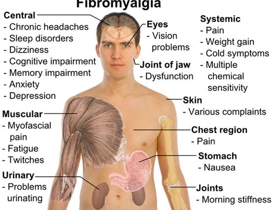 kako koristiti ambrozije u hipertenziji imam glavobolju i hipertenzije