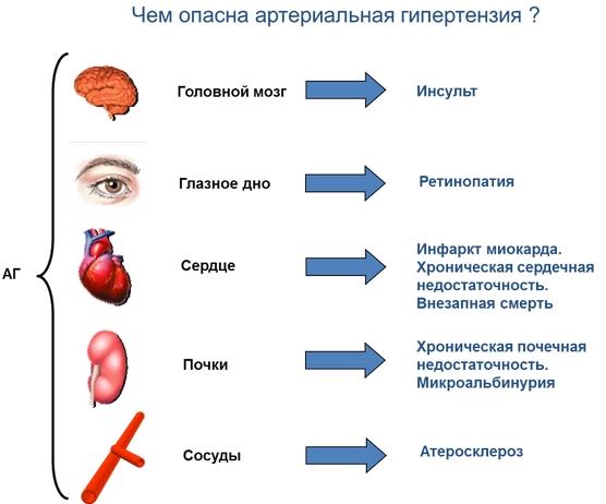 hipertenzija nootropici)