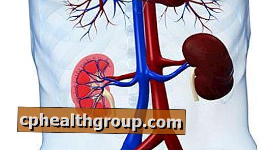 hipertenzija kod dijabetičara 1 brzina sol hipertenzija