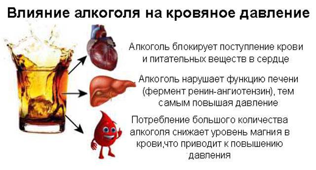 Je li konjak dobar za srce i vaskularno zdravlje - detaljan pregled - Ulje