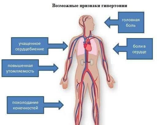 Leo Bokeriya o zdravom načinu života. Leo Bokeria na Turčinski, viski i dugovječnost